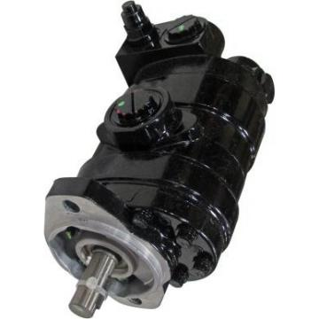 Gleaner A76 Reman Hydraulic Final Drive Motor