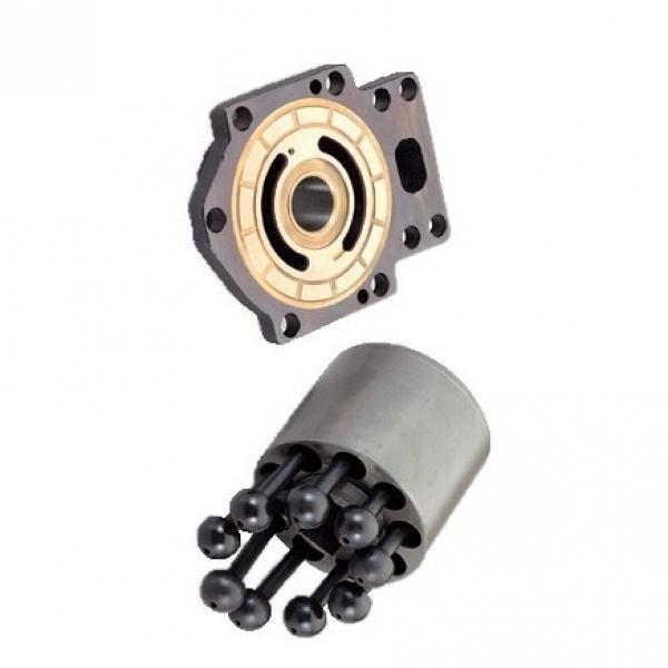 Dynapac 4812120558 Reman Hydraulic Final Drive Motor #1 image