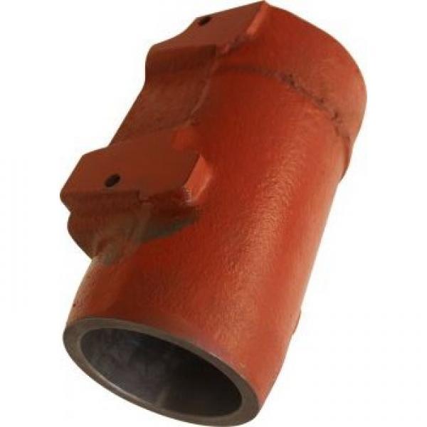 Gleaner 71385807 Reman Hydraulic Final Drive Motor #1 image