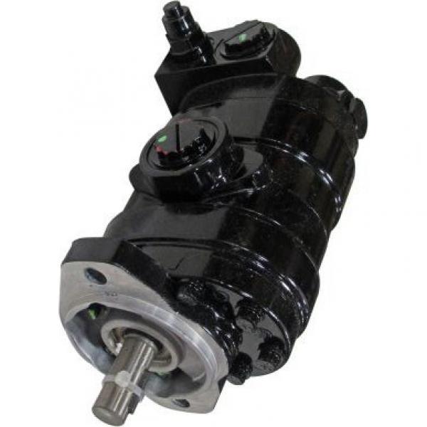 Gleaner 71385807 Reman Hydraulic Final Drive Motor #3 image
